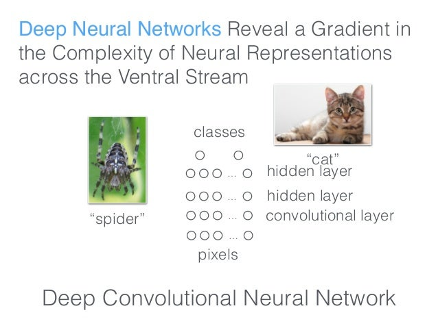 Deep Neural Networks Reveal a Gradient in the Complexity of Neural Representations across the Ventral Stream … pixels clas...