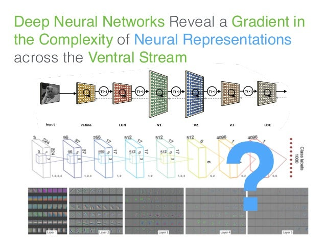 Deep Neural Networks Reveal a Gradient in the Complexity of Neural Representations across the Ventral Stream ?