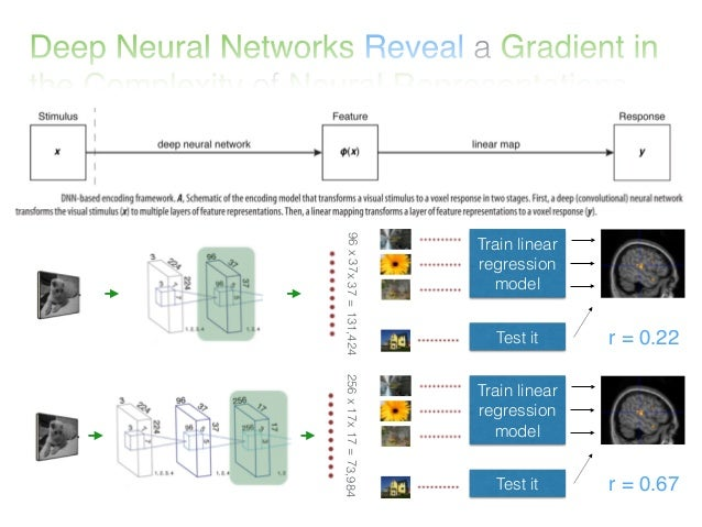 Deep Neural Networks Reveal a Gradient in the Complexity of Neural Representations across the Ventral Stream