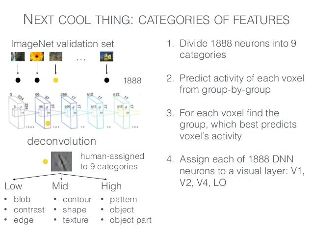 NEXT COOL THING: CATEGORIES OF FEATURES