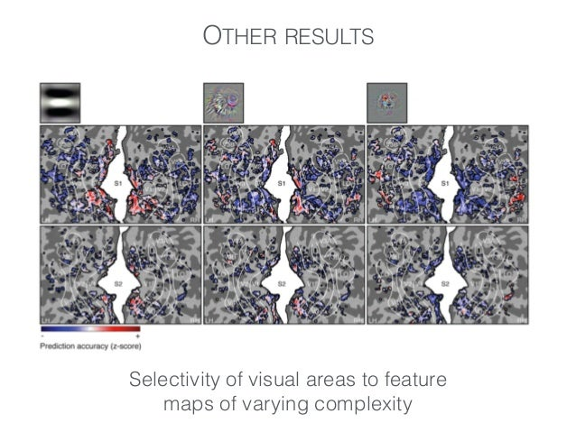 OTHER RESULTS Biclustering of voxels and feature maps