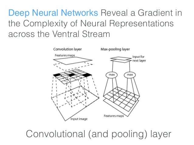 Deep Neural Networks Reveal a Gradient in the Complexity of Neural Representations across the Ventral Stream Convolutional...