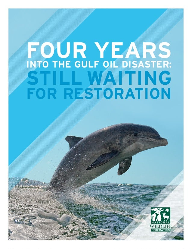 NATIONAL WILDLIFE FEDERATION FOUR YEARSINTO THE GULF OIL DISASTER: STILL WAITING FOR RESTORATION