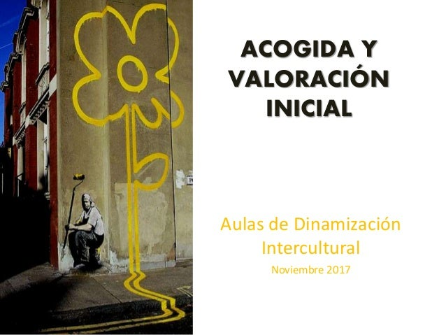 ACOGIDA Y VALORACIÓN INICIAL Aulas de Dinamización Intercultural Noviembre 2017