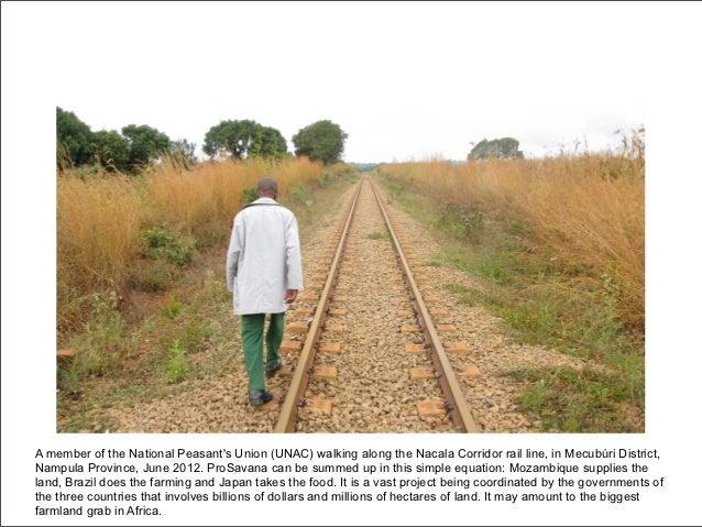 A member of the National Peasants Union (UNAC) walking along the Nacala Corridor rail line, in Mecubúri District,Nampula P...