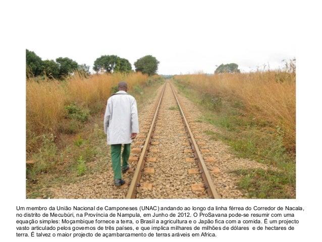 Um membro da União Nacional de Camponeses (UNAC) andando ao longo da linha férrea do Corredor de Nacala,no distrito de Mec...