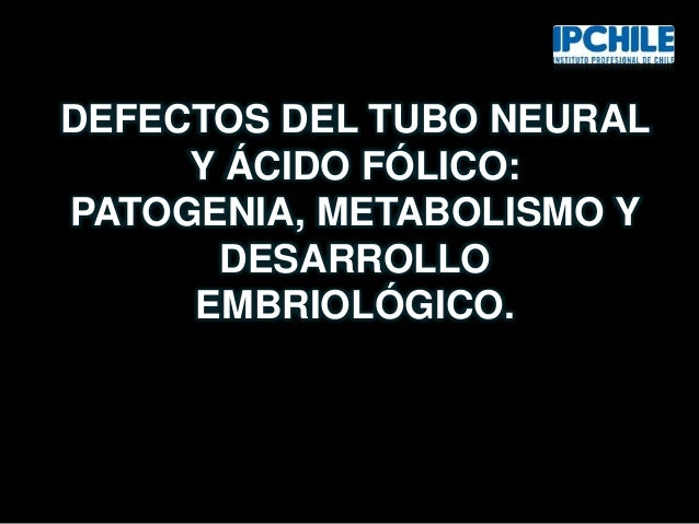 DEFECTOS DEL TUBO NEURAL Y ÁCIDO FÓLICO: PATOGENIA, METABOLISMO Y DESARROLLO EMBRIOLÓGICO.
