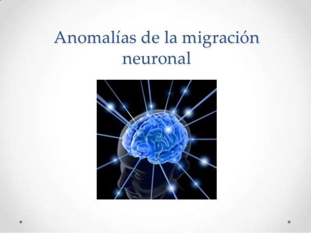 Anomalías de la migración neuronal