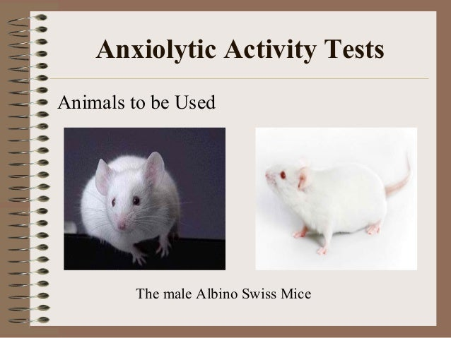 thesis anxiolytic activity Full-text (pdf) | silexan is an essential oil produced from lavandula angustifolia flowers with proven clinical efficacy for the treatment of anxiety disorders.