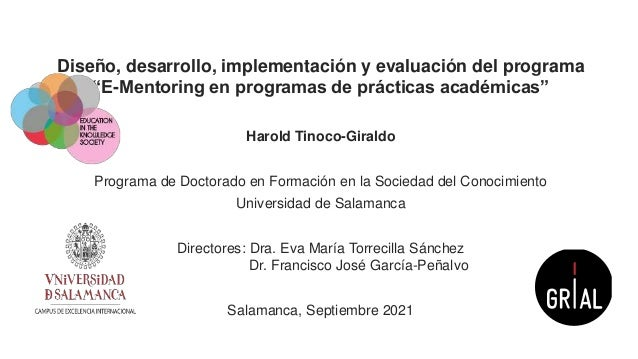 """Diseño, desarrollo, implementación y evaluación del programa""""E-Mentoring en programas de prácticas académicas"""""""