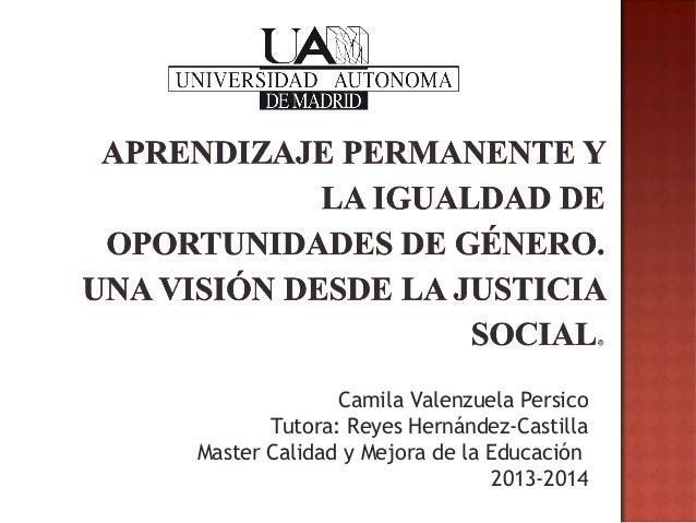 Camila Valenzuela Persico Tutora: Reyes Hernández-Castilla Master Calidad y Mejora de la Educación 2013-2014