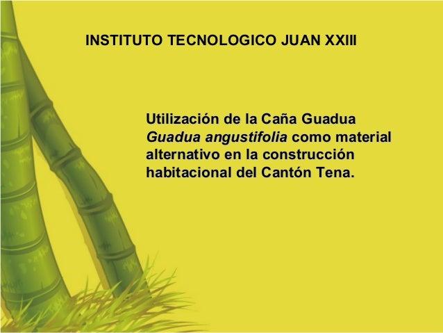 Utilización de la Caña Guadua  Guadua angustifolia  como material alternativo en la construcción habitacional del Cantón T...