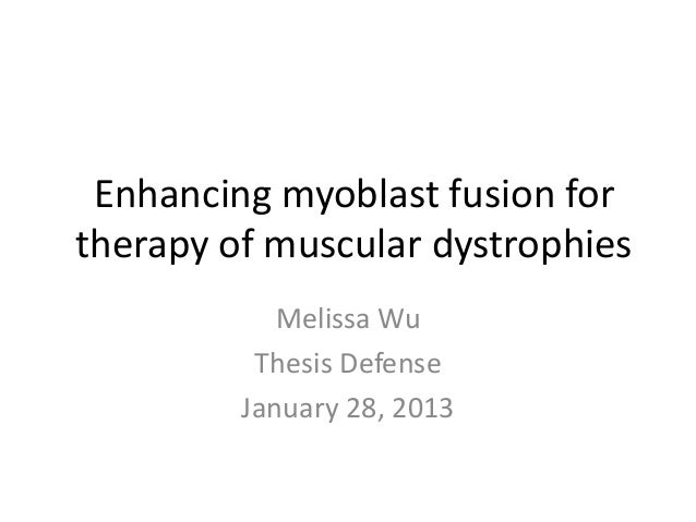 Enhancing myoblast fusion fortherapy of muscular dystrophies            Melissa Wu          Thesis Defense         January...