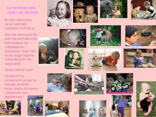 Defensem els animals  Slide 3