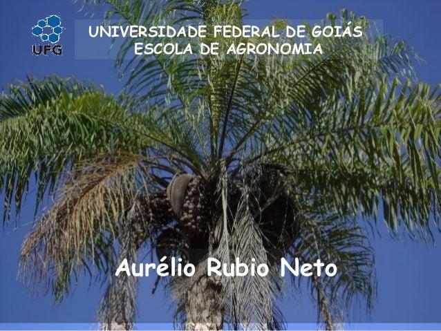 Aurélio Rubio Neto UNIVERSIDADE FEDERAL DE GOIÁS ESCOLA DE AGRONOMIA