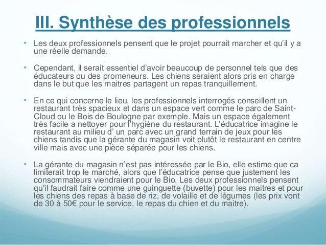 III. Synthèse des professionnels • Les deux professionnels pensent que le projet pourrait marcher et qu'il y a une réelle ...