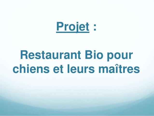 Projet : Restaurant Bio pour chiens et leurs maîtres