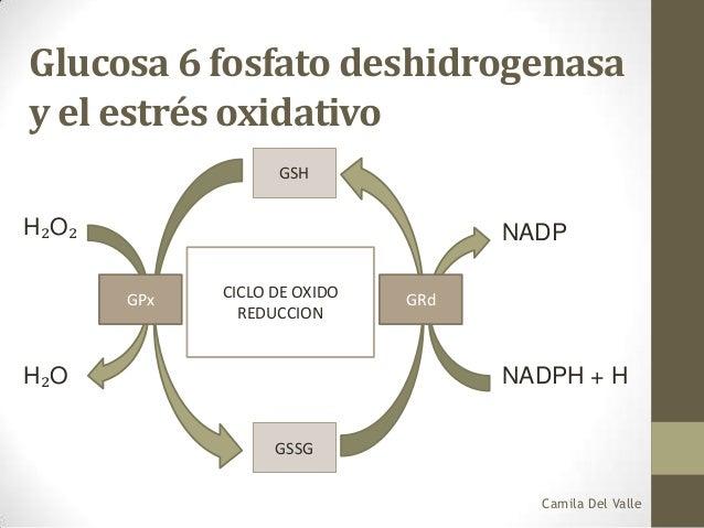 Deficiencia glucosa 6 fosfato deshidrogenasa