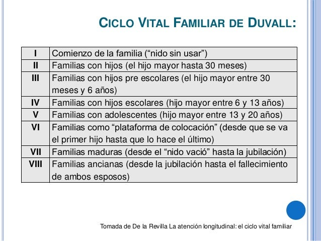 Definici n de familia y ciclo vital familiar for Concepto de familia pdf