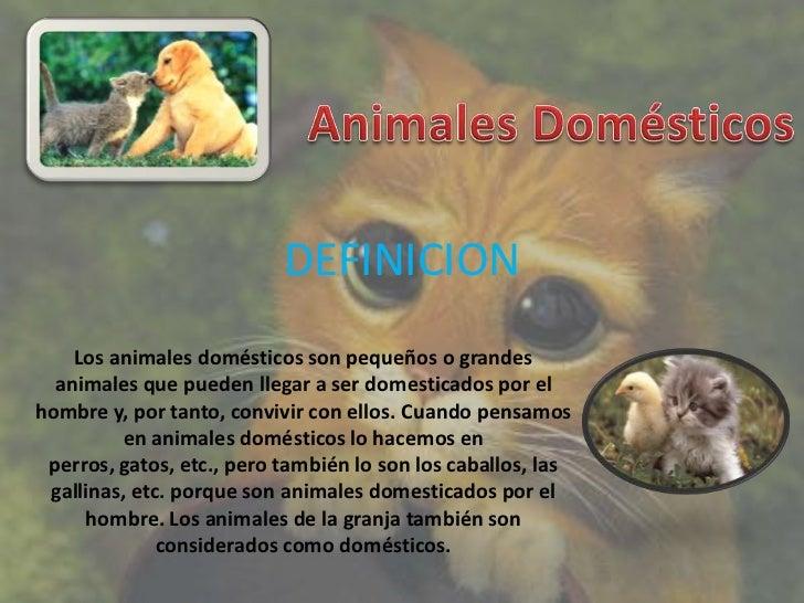 DEFINICION    Los animales domésticos son pequeños o grandes  animales que pueden llegar a ser domesticados por elhombre y...