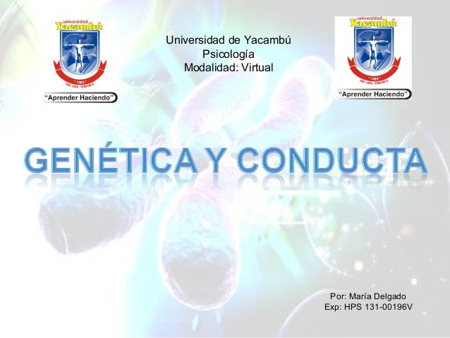 Por: María Delgado Exp: HPS 131-00196V Universidad de Yacambú Psicología Modalidad: Virtual
