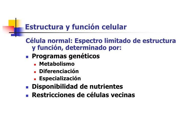 Estructura y función celular Célula normal: Espectro limitado de estructura   y función, determinado por:  Programas gené...