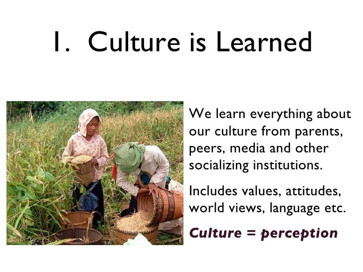 is culture learned