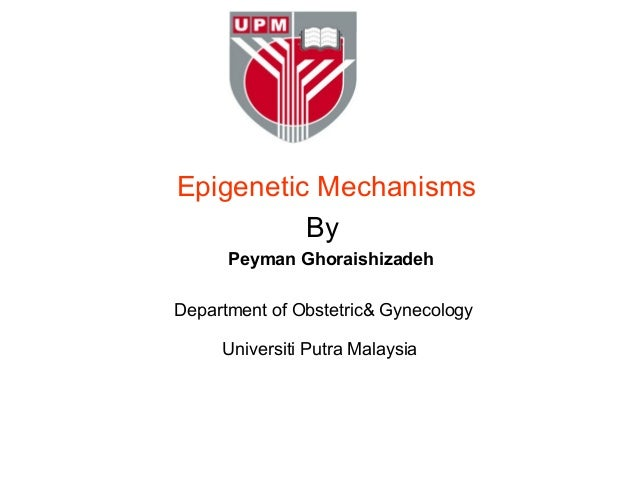 Epigenetic Mechanisms          By      Peyman GhoraishizadehDepartment of Obstetric& Gynecology     Universiti Putra Malay...
