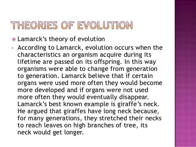 a description of the theory of evolution by lamarck Lamarck's theory was called the theory of acquired characteristics and  facts  and concrete details about theories of evolution provides analysis of content  to  explain the differences and similarities in lamarck's and darwin's theories of.