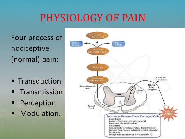 theory of acute pain management essay Chronic pain is a complex and confusing problem unlike acute pain, which is well correlated with injury, chronic pain is often unrelated to tissue damageit might be driven by a wide variety of factors like sleep, mood, thoughts, or emotions.