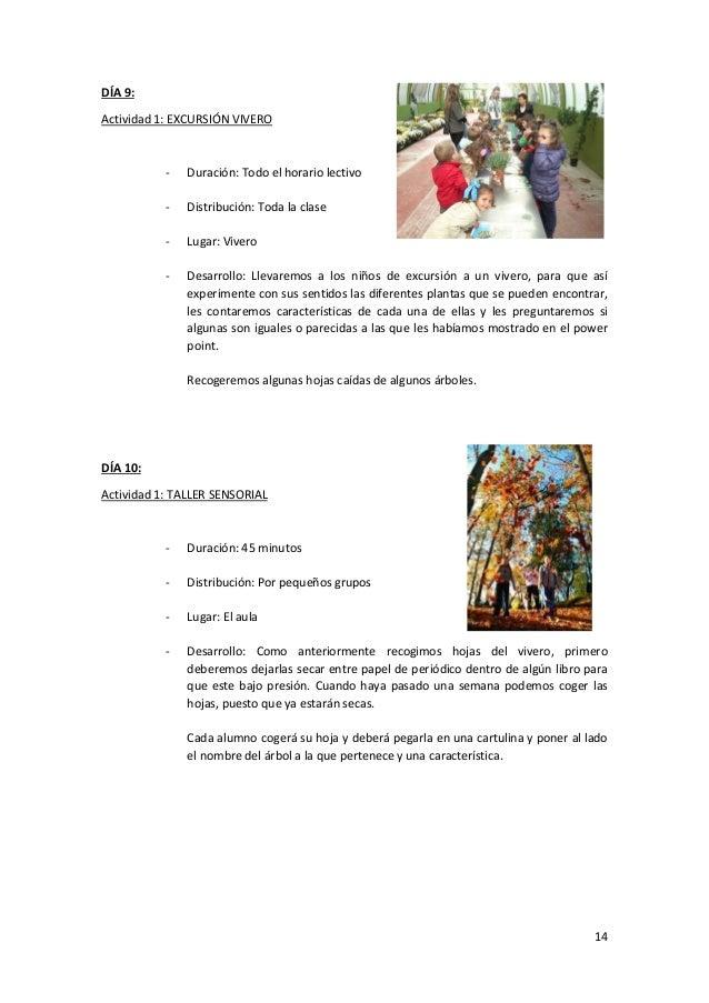 Unidad Didáctica: La Selva