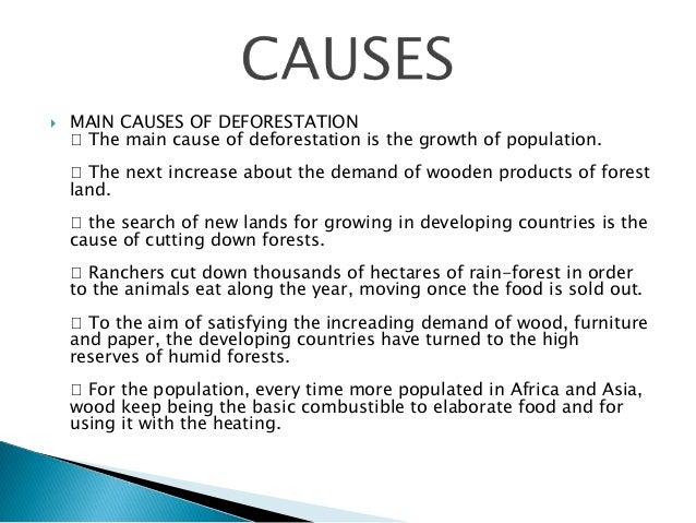 deforestation canada essay