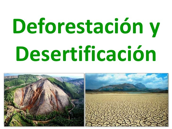Deforestación yDesertificación