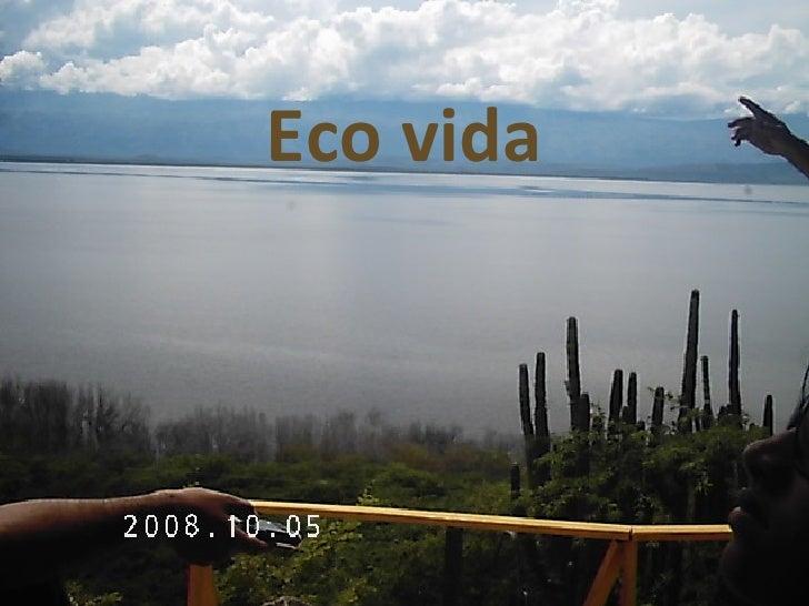 Eco vida