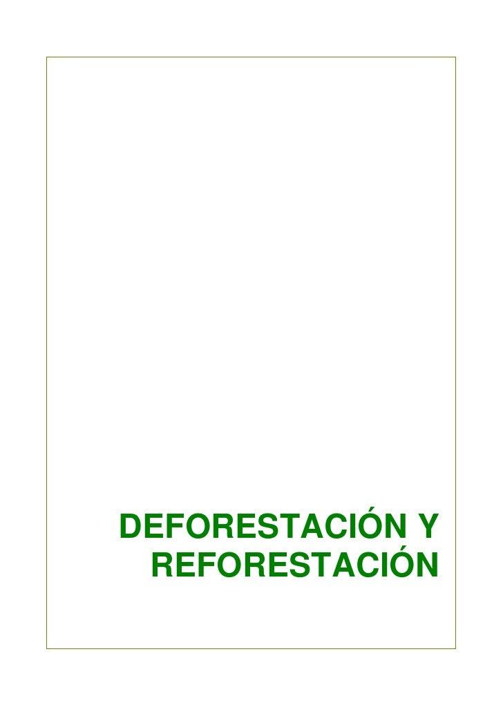 DEFORESTACIÓN Y REFORESTACIÓN