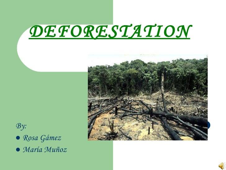 DEFORESTATION <ul><li>By: </li></ul><ul><li>Rosa Gámez  </li></ul><ul><li>María Muñoz </li></ul>