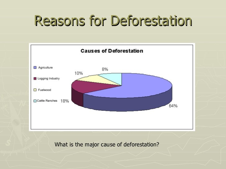 causes of deforestation Causes of deforestation deforestation is the product of the interaction of the many environmental, social, economic, cultural, and political forces at work in any given region.