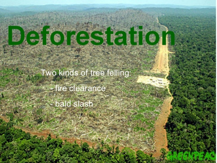 deforestation limitations Pros and cons of deforestation the world is covered by over 10 billions acres of forests, that is over 30% of the entire planet humans are rapidly cutting down this land, in a process called deforestation.