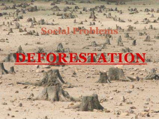 Social ProblemsDEFORESTATION