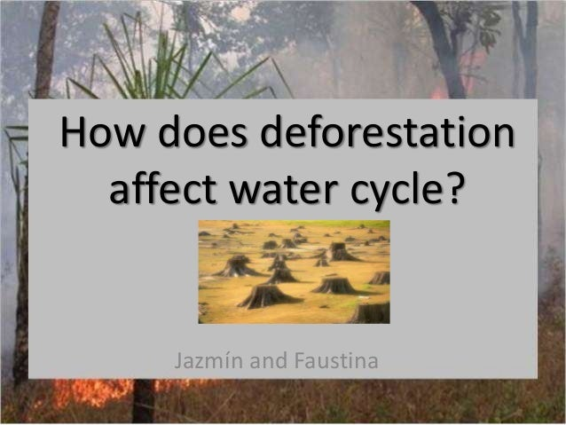 How does deforestationaffect water cycle?Jazmín and Faustina