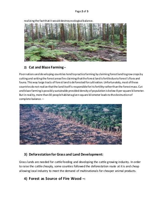deforestation devastation essay I am writing an essay on deforestation,  deforestation is the permanent devastation of native forests and woods  essay deforestation.