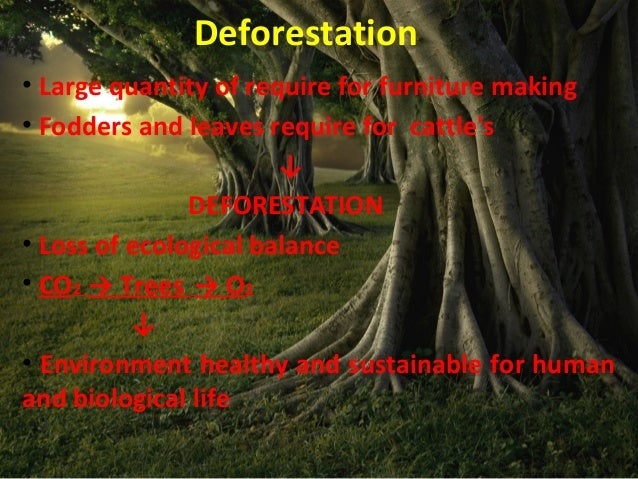 deforestation in indian Deforestation is a vicious cycle it is not just the loss of tree cover, but a negative change in the whole ecosystem resulting in decreased growth not just in the agricultural sector but in all .