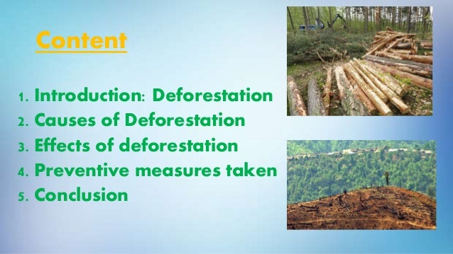 preventive measures of deforestation Norway has become the first country to ban deforestationthe norwegian parliament pledged may 26 that the government's public procurement policy will be deforestation-free any product that contributes to deforestation will not be used in the scandinavian country.