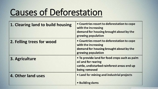 preventive measures of deforestation Avoidance of deforestation and forest degradation in the border area of southern  laos and central vietnam for the long-term conservation of carbon sinks and.