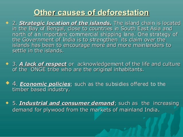essay on deforestation in india Deforestation in the amazon discussion of the geographical, economical, and the overall influential importance of the amazon rainforest is, in my opinion, a necessity to understanding why deforestation is a huge mistake and will lead to major consequences for the entire planet.