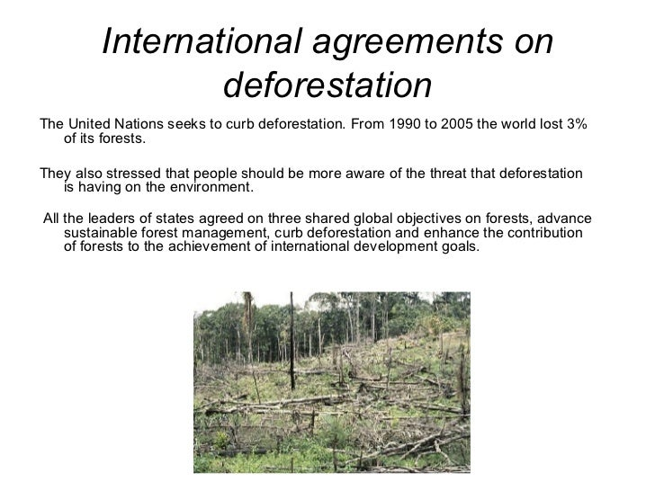 International agreements on deforestation <ul><li>The United Nations seeks to curb deforestation. From 1990 to 2005 the wo...
