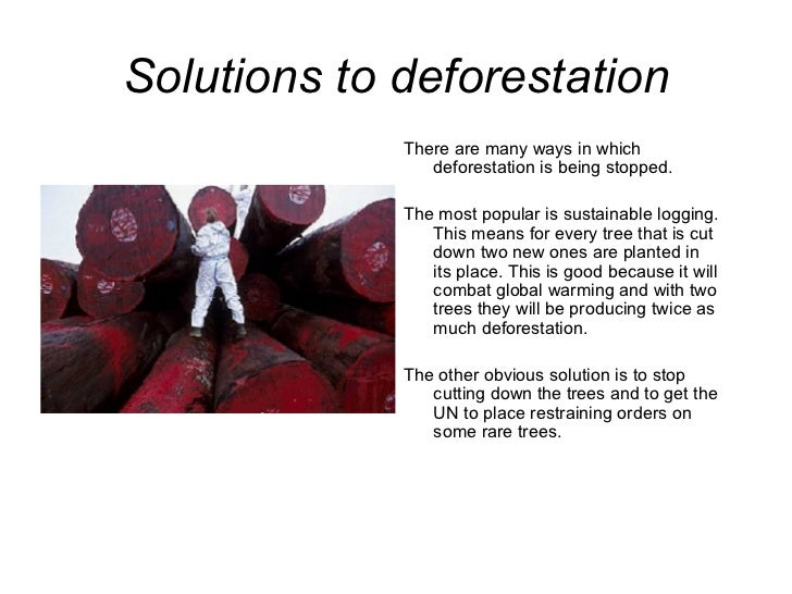 Solutions to deforestation <ul><li>There are many ways in which deforestation is being stopped. </li></ul><ul><li>The most...