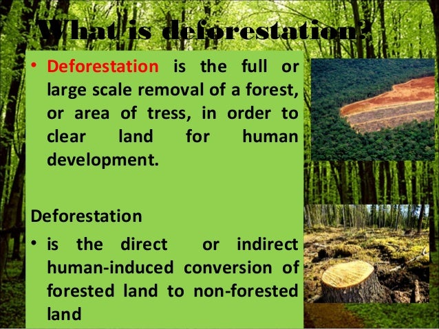 disadvantages of deforestation Deforestation has several disadvantages it increases the level of carbon dioxide in the atmosphere and causes more soil erosion, which leads to other issues it also destroys animals habitat, ultimately leading to the loss of biological diversity in both the plant and animal worlds.