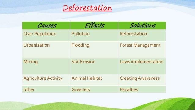 Deforestation (1)