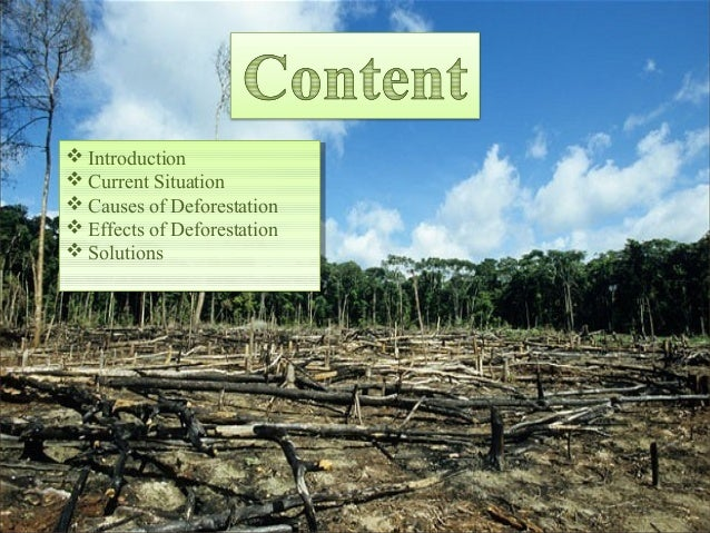 deforestation causes consequences and solutions The causes of deforestation vary from region to region, but have one big thing in common: humans it's up to us to find the solutions to deforestation.